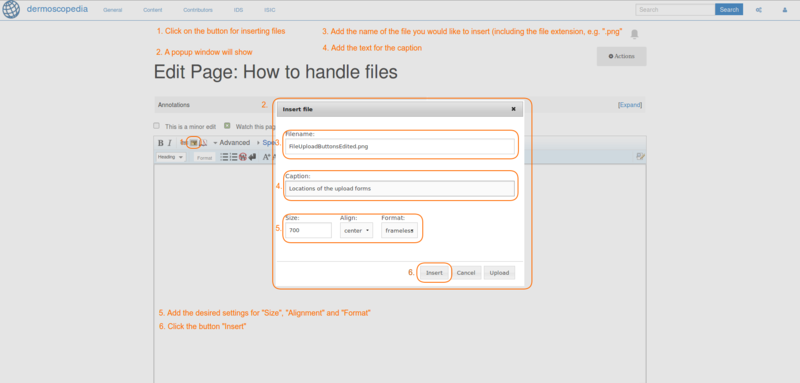 View of the upload form